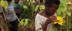 Red de Derechos Humanos y Sindicales para África Oriental