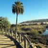 Alicante, 15 de Mayo: Una fiesta para compartir