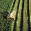 El mundo rural, indignado y en lucha por el futuro