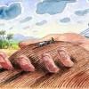Movimiento Internacional de Rurales Cristianos contra el acaparamiento de tierras