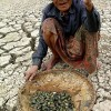 Cambio climático y soberanía alimentaria
