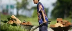 Progresos en la lucha contra el trabajo infantil