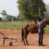 Manos Unidas | Sin derecho a la alimentación,  no hay Derechos Humanos