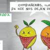 Segorbe-Castellón    Precariedad en el sector de la naranja