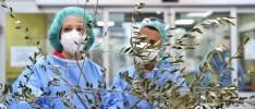 Opinión | La dimensión ética en la crisis sanitaria